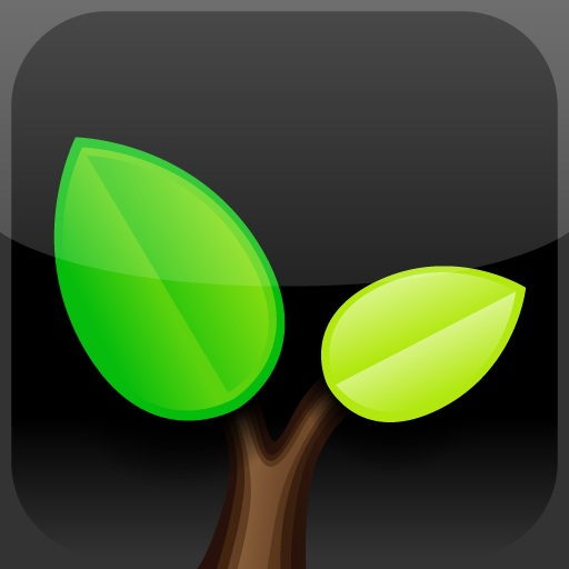AOL Seed