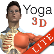 Travel Yoga 3D In the Car lite