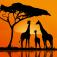 Geo Walk – 3D World Fact Book Icon