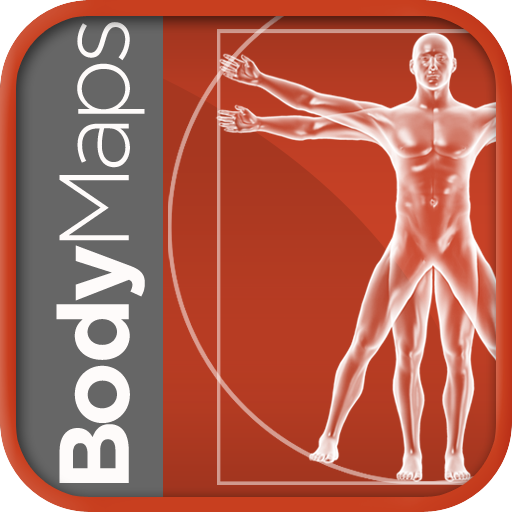 Healthline Body Maps – 3D Human Anatomy