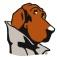 McGruff SafeGuard Browser Icon