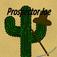 Prospector Joe Icon