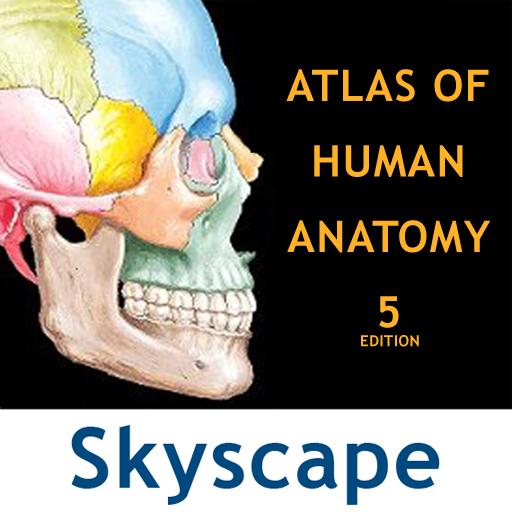 Atlas Of Human Anatomy 5th Edition Periodic Diagrams Science